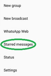 whatsapp-starred-messages-2