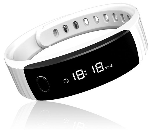 Intex-FitRist-official