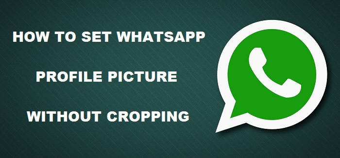 How to set WhatsApp profile picture without cropping (4)