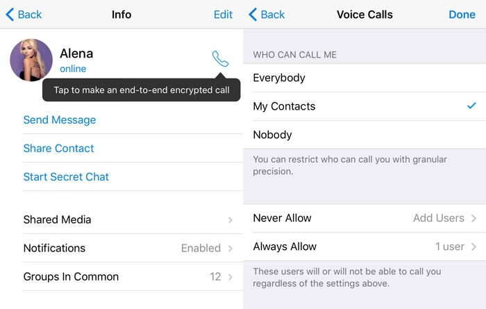 telegram-voice-calls