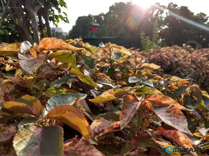 Motorola-Moto-Z2-Play-Camera-Samples-Review-Images-18