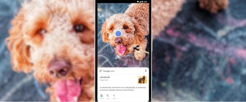 Google-Lens-will-be-available-directly-in-the-Camera-app