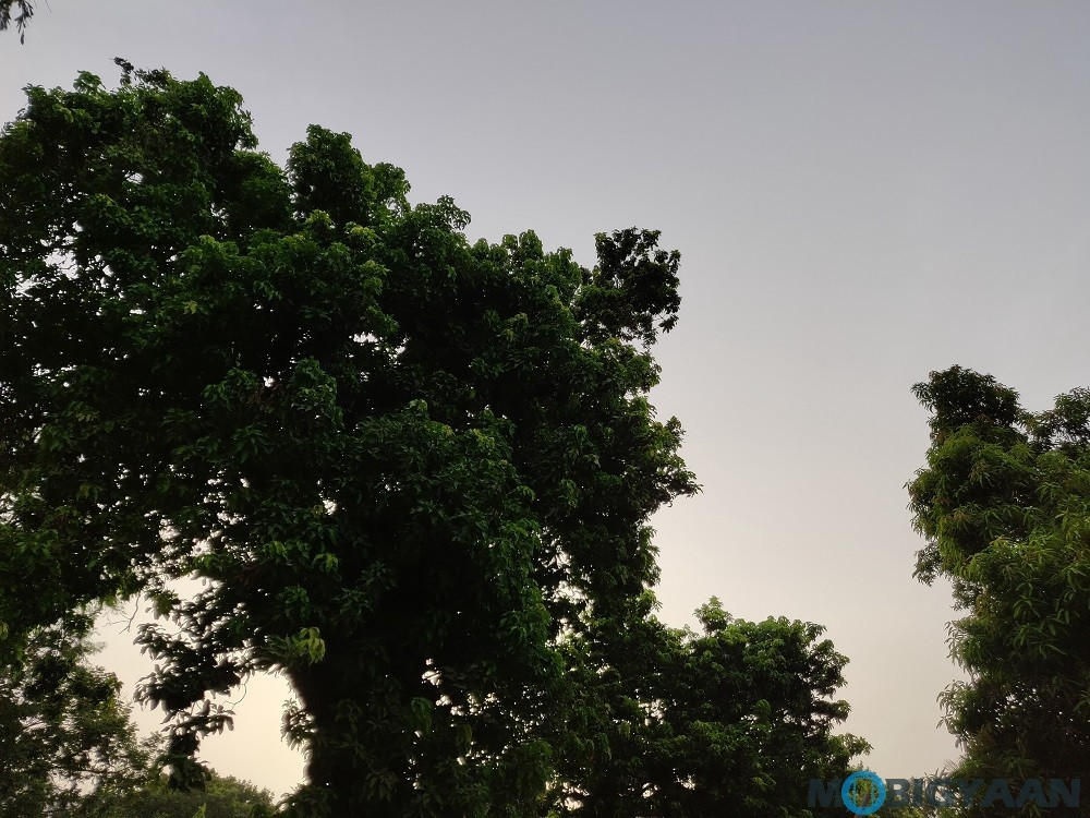 oneplus-6-review-camera-samples-daylight-10-non-hdr