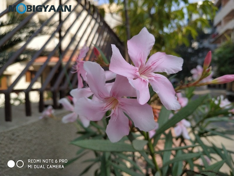 Xiaomi-Redmi-Note-6-Pro-Camera-Samples-7