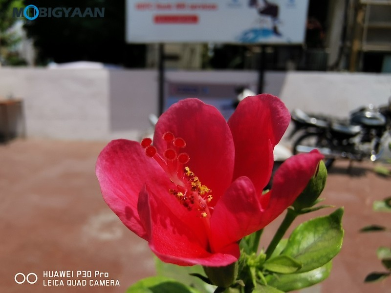 HUAWEI-P30-Pro-Review-Camera-Samples-9