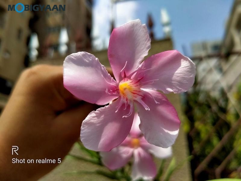realme-5-Review-Camera-Samples-4