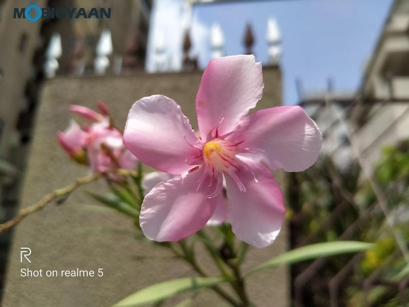 realme-5-Review-Camera-Samples-5