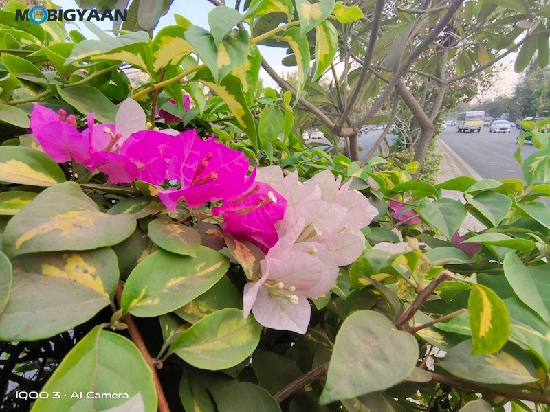Wide-Angle-2-iQOO-3-5G-Camera-Samples-Review