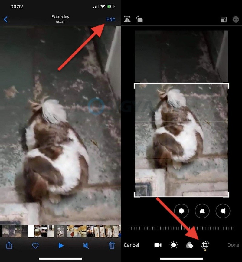 How-To-Crop-Videos-on-iPhone-Without-Using-Third-Party-Apps-1