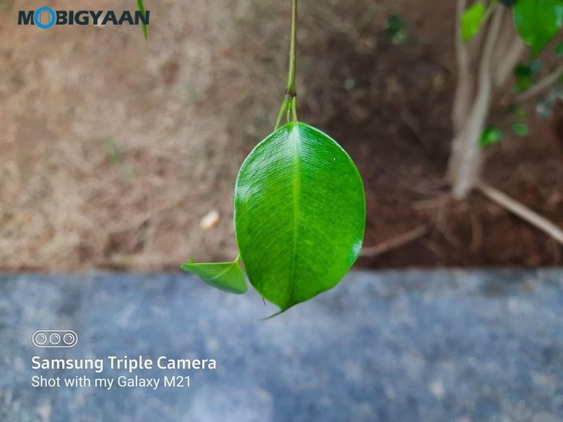 Samsung-Galaxy-M21-Camera-Samples-3