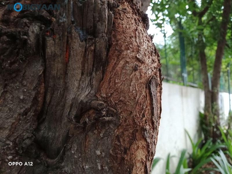 OPPO-A12-Review-Camera-Samples-1