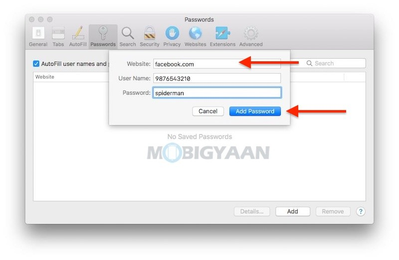 How-to-manually-add-passwords-into-Safari-for-auto-login-Mac-2
