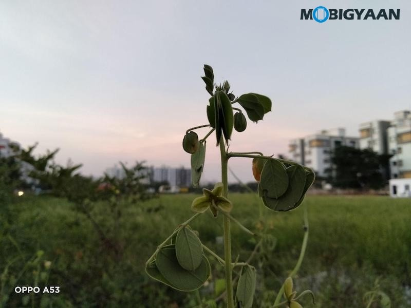 OPPO-A53-Review-Camera-Samples-2