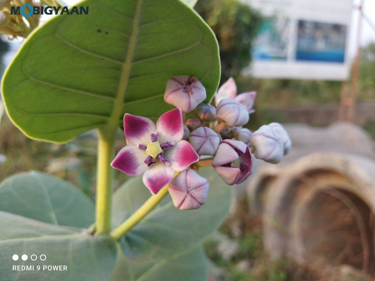 Xiaomi-Redmi-9-Power-Camera-Samples-Review-1