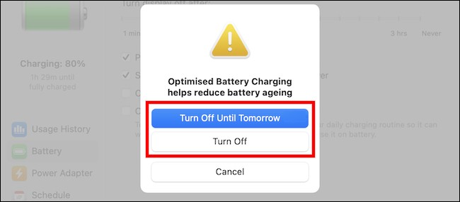 Disable-Optimized-Battery-3