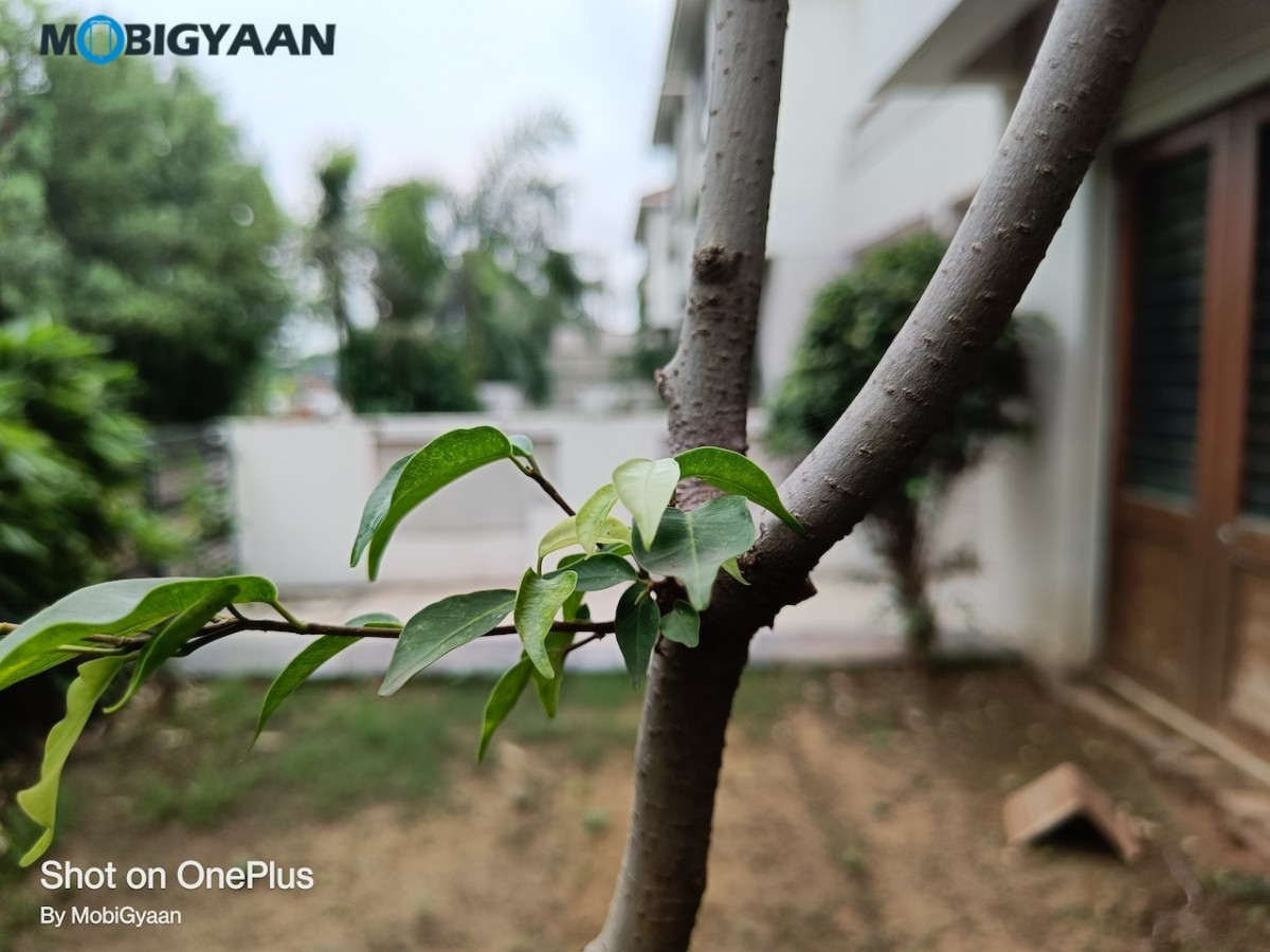 OnePlus-Nord-2-5G-Review-50MP-Camera-Samples-5